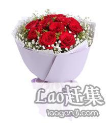 长宁区办公区花卉租摆|植物租赁送货上门长宁区北新泾
